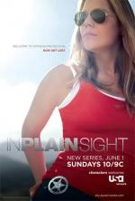 В простом виде / In Plain Sight (2008)